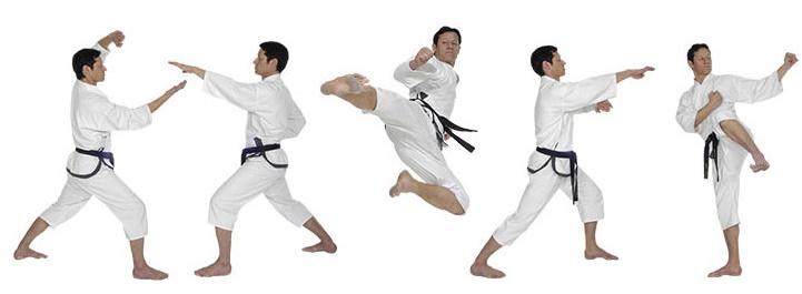 twin Taekwondo_Oberbayern